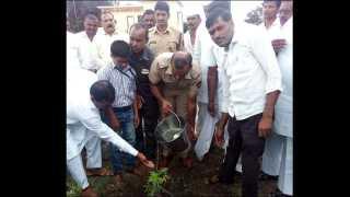 चांडोह (ता. शिरूर) येथे महात्मा गांधी तंटामुक्त गाव समिती अंतर्गत वृक्षारोपन करण्यात आले.