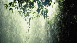 marathi news sakal editorial rain song