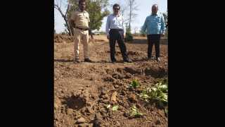 Bombs were found in the field in Wada taluka