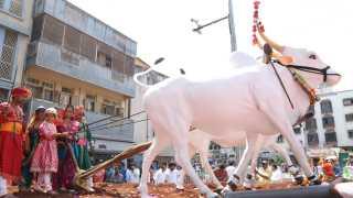 shiv jayanti