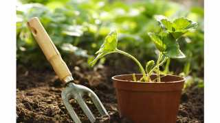 Akola Agricultural University has started gardener training course