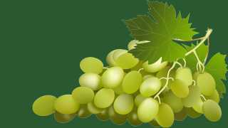 Mumbai news Marathi news grapes rate in Mumbai