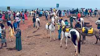 महाबळेश्वर - वेण्णा लेक परिसरात घोडेस्वारीचा आनंद लुटण्यासाठी झालेली पर्यटकांची गर्दी.