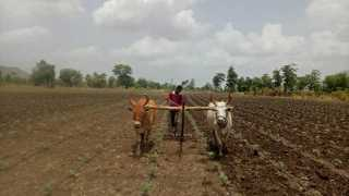 Farmers worried due to low rainfall