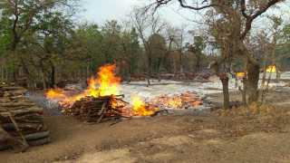 Maoists blocked the road in Gadchiroli