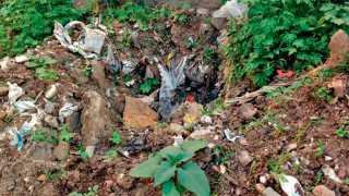 हिंगणे - नव्याने साकारण्यात येणाऱ्या नागरी वन उद्यानाकडे जाणाऱ्या रस्त्यात काही महिन्यांपूर्वी वृक्षारोपण करण्यात आले. या वेळी वृक्षारोपणासाठी खणलेल्या खड्ड्याची झालेली कचराकुंडी.