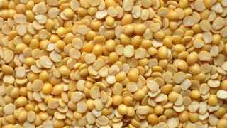25 lakh quintals of  the state government selling turdal