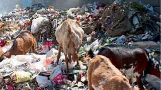 aurangabad garbage