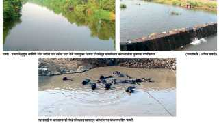 Irrigation area increased in Sudhagad taluka