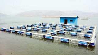 """चिमलखेडी (जि. नंदुरबार) - सरदार सरोवर प्रकल्पात मासेमारीसाठी तयार केले जात असलेले """"केज कल्चर'."""