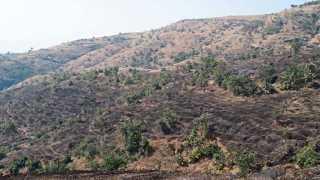पवन मावळ - बेसुमार वृक्षतोड व वणव्यामुळे बकाल झालेला डोंगर.