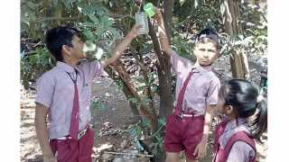 Water For Birds Activity By School Students