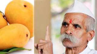 bhide-mango