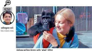 pradipkumar mane write article in editorial