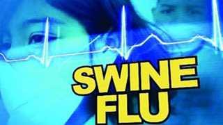 swine-flu