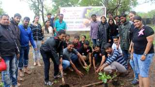 saiholics tree plantation esakal news