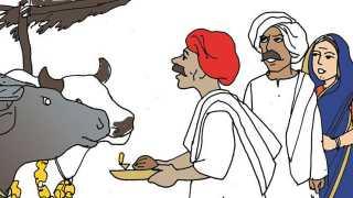 Marathi news Agriculture news in Marathi Agrowon news Diwali 2017