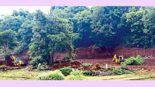 पश्चिम सुपने - कोयना नदीकाठची झाडे जेसीबीने राजरोसपणे पाडली जात असून, मातीउपशाने नदीकाठही पोखरण्यात आला आहे.