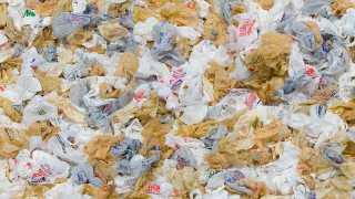 representational image of Plastic Bags