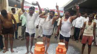 farmers bathing in milk on road