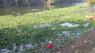 Mula-Pawana River jalparni