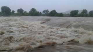 rain in Palghar