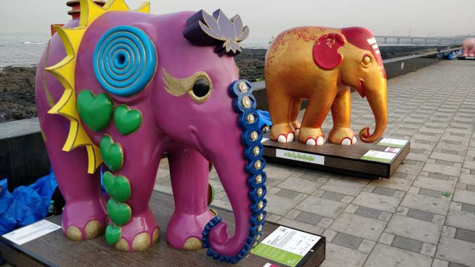 marathi news colourful elephants at worli seaface image story