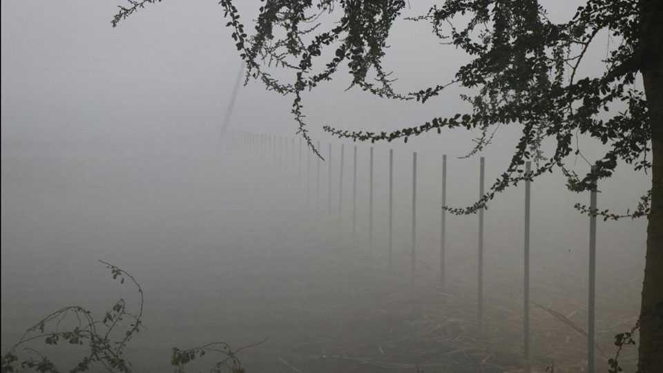 Fog Beautiful view Nature Grass Bus
