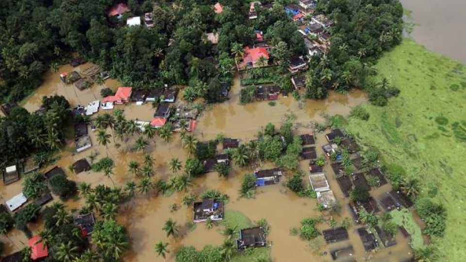 food needs in Kerala Plumber, ready to eat