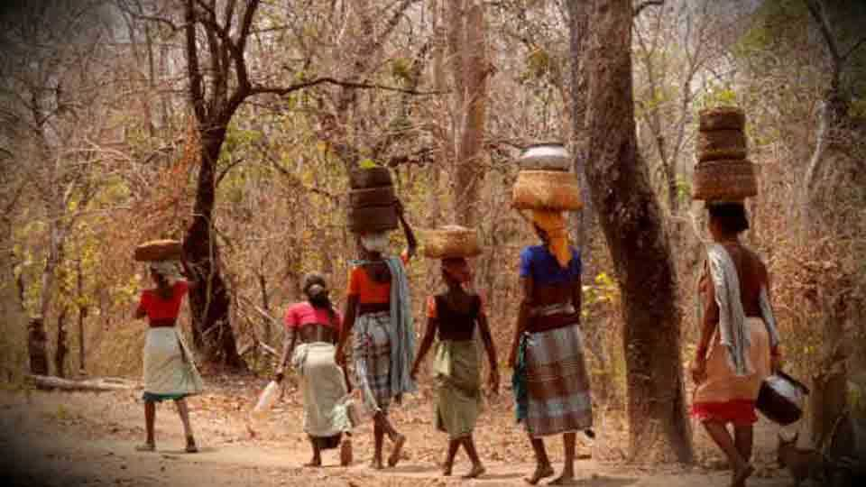 Adivasi Of Yevla Seven Thousand Five Hundred Eligible Candidates For Land Holding