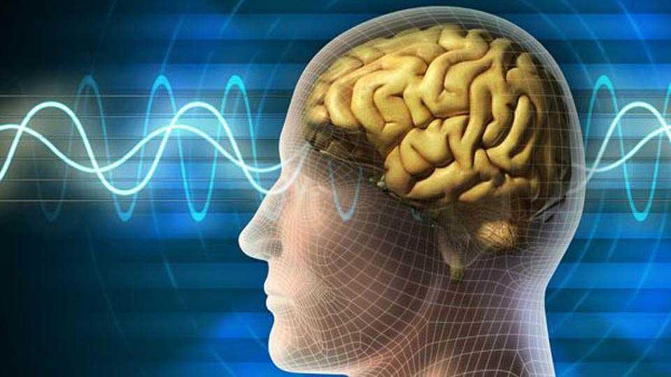 बदलत्या जीवनशैलीचा मेंदूवर परिणाम