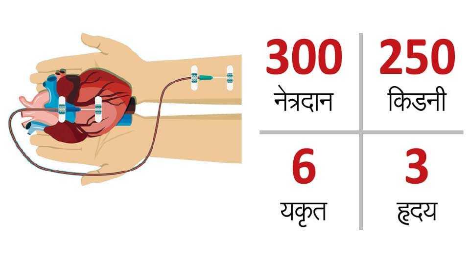 Body-Organ-Donate