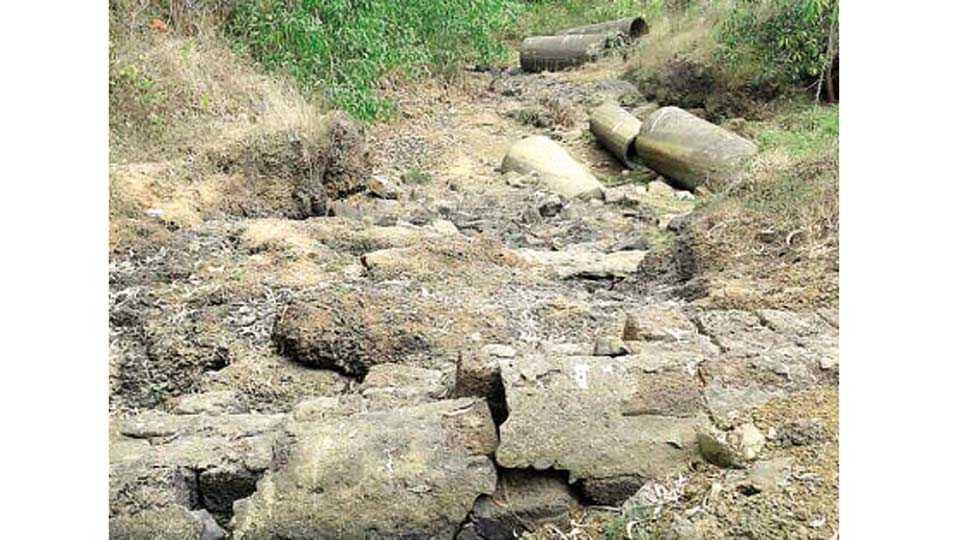 न्हावेली - रेवटेवाडी येथील हेच पूल वाहून गेल्यामुळे गावाचा संपर्क तुटला आहे.