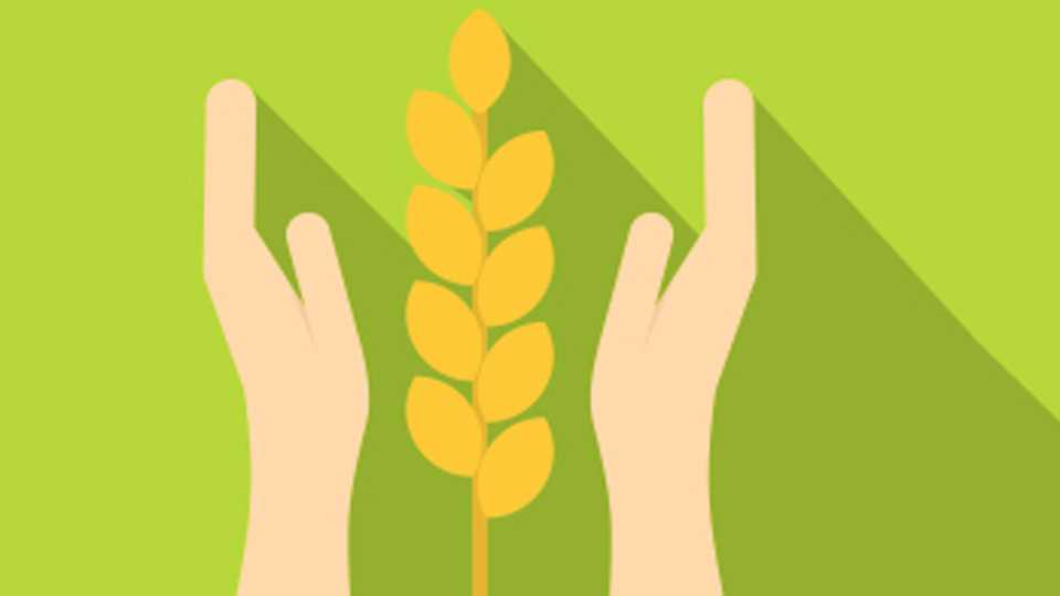Crop-Insurance-Scheme
