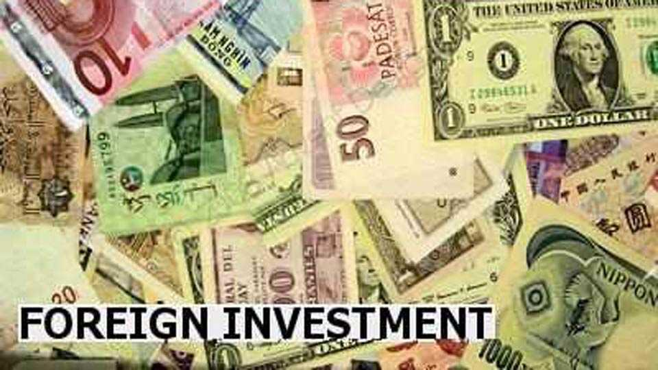foreign investment less
