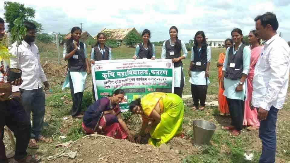 Agriculture Day and Plantation at vathar nimbalkar faltan taluka
