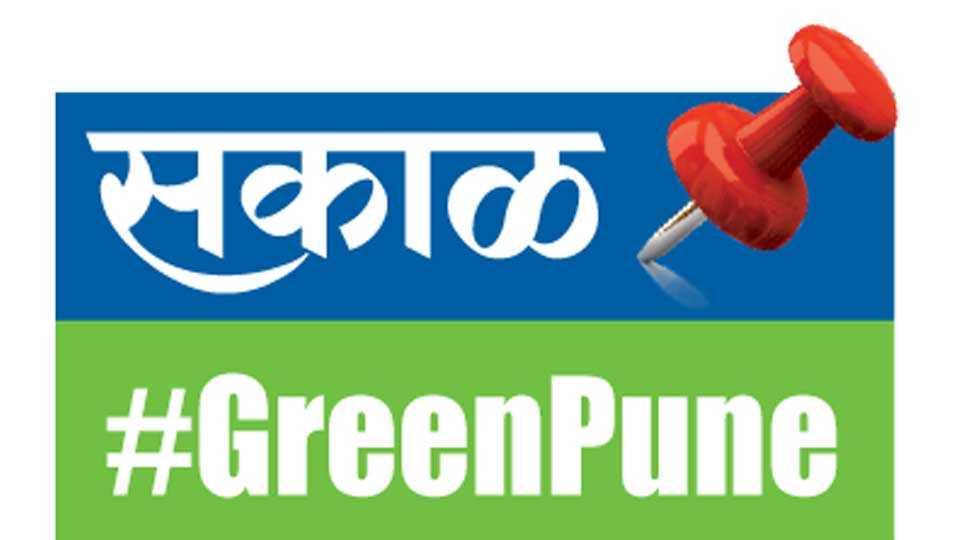 Green-Pune