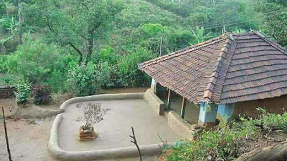 निसर्गाशी एकरूप झालेले पश्चिम घाटातील एक घर.