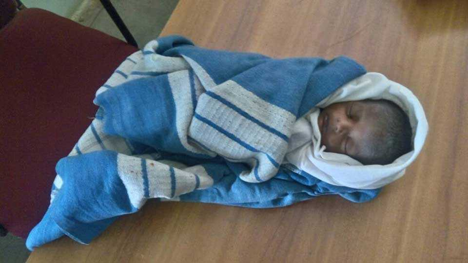 Sindhudurg News Marathi news konkan news kolhapur news Infant found