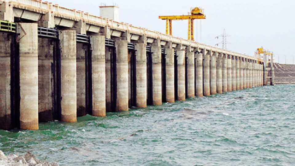 Jayakwadi Dam Water