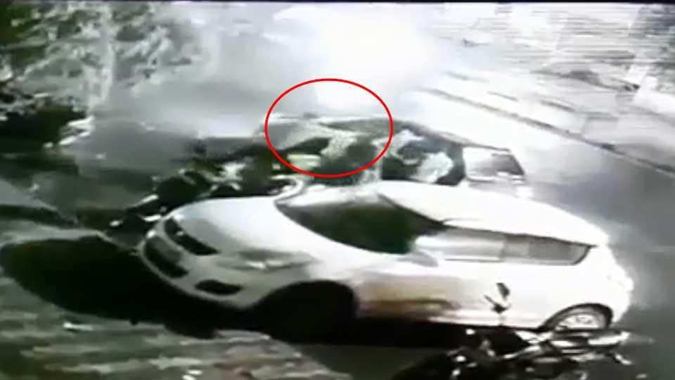 nashik news cctv video marathi news crime news theft gold chain theft