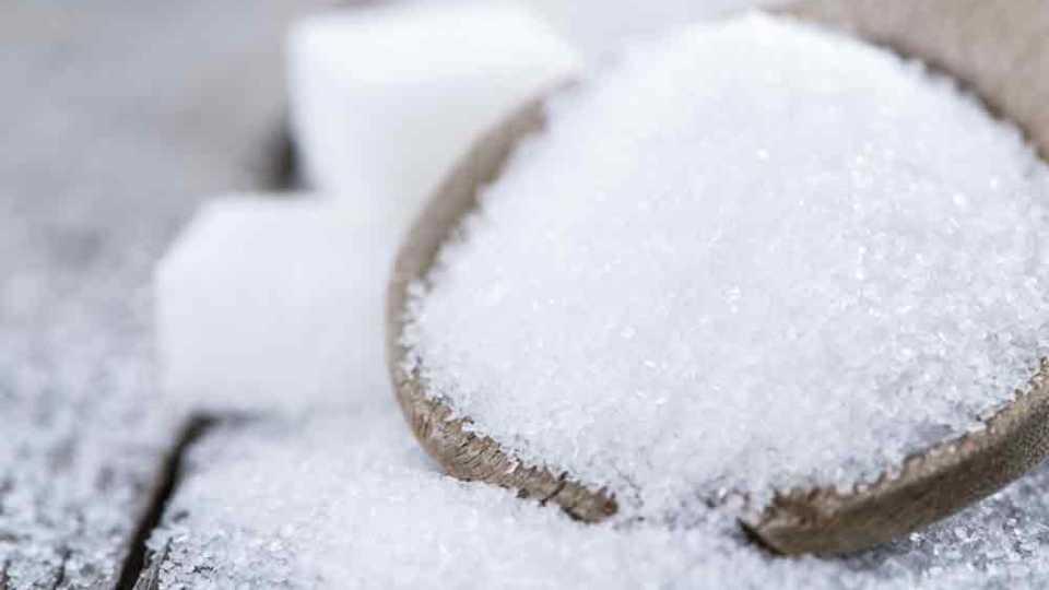 marathi news solapur news maharashra news sugar import tax