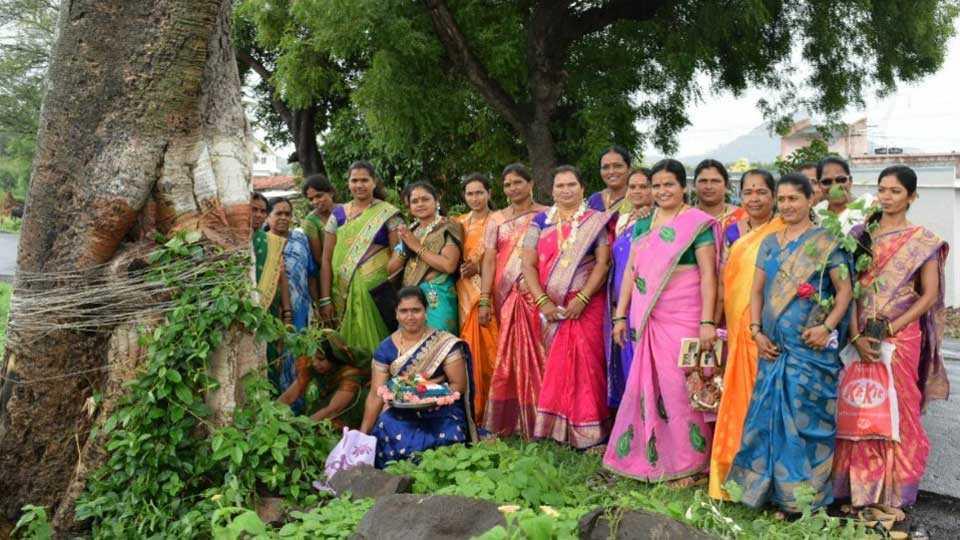 Farmer women collective celebrate vatsavitri festival