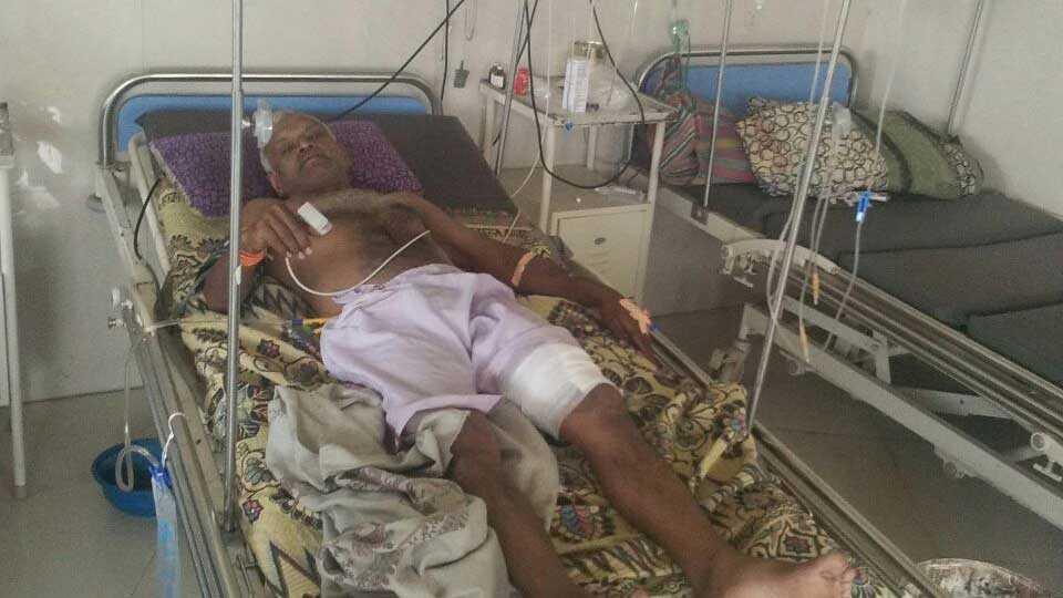 marathi news chalisgaon forest pig attack farmer