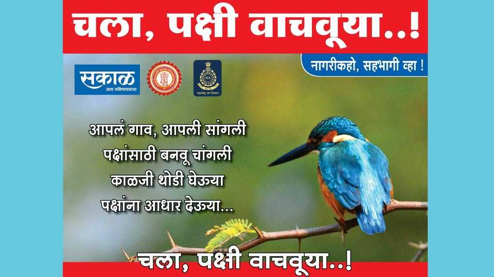 birds save mission starts in Sangli