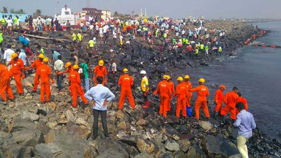 chennai-oil-spill-clean-up