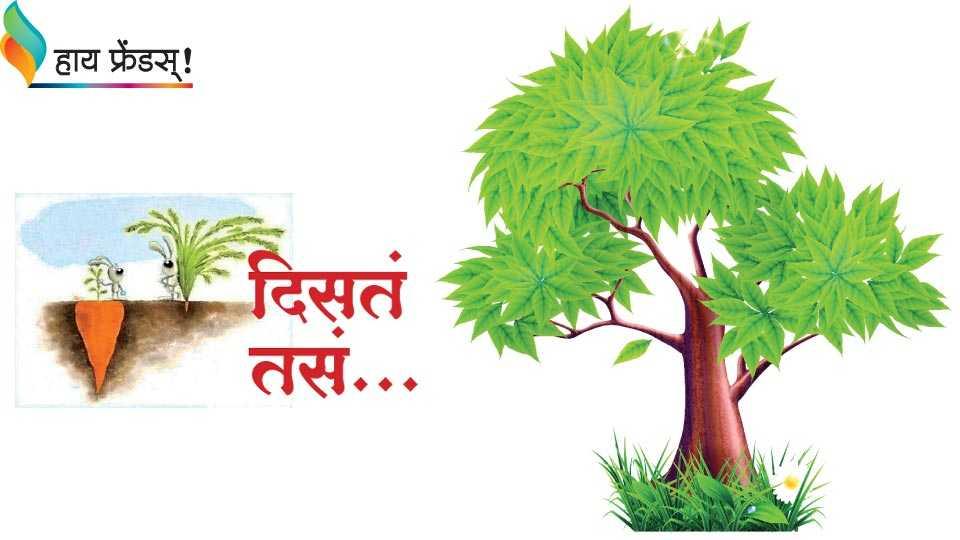 sai write article in SmartSobati