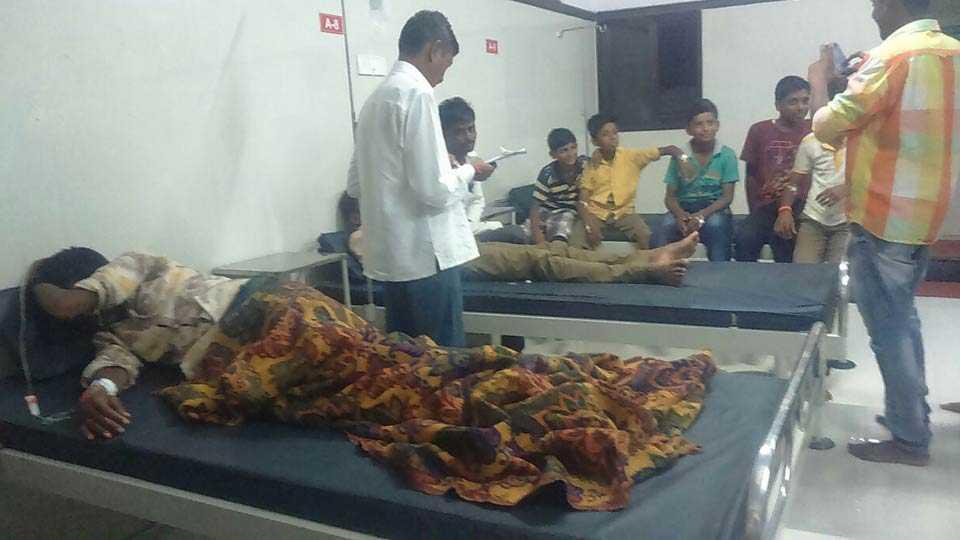 Seven children poisoned after eating Jatropha seeds