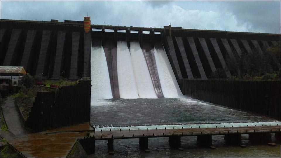 कोयना परिसरात मुसळधार पाऊस; पाणीसाठ्यात वाढ