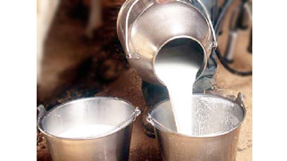 Challenge the Maharashtra government's co-operative milk teams